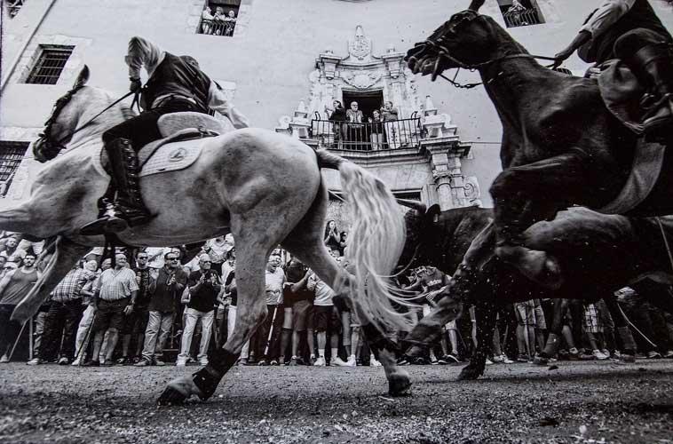 Fallo del Concurso de Fotografía Taurina