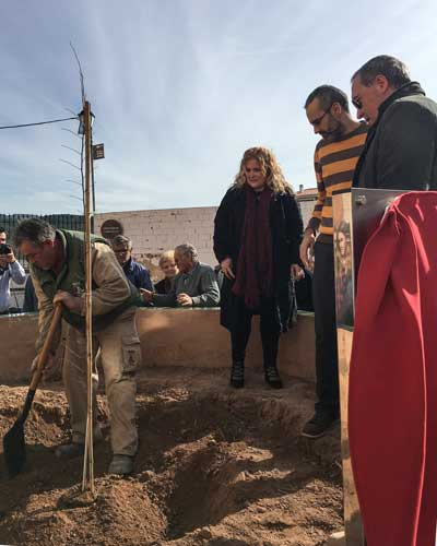 Castellnovo recupera El Olmo